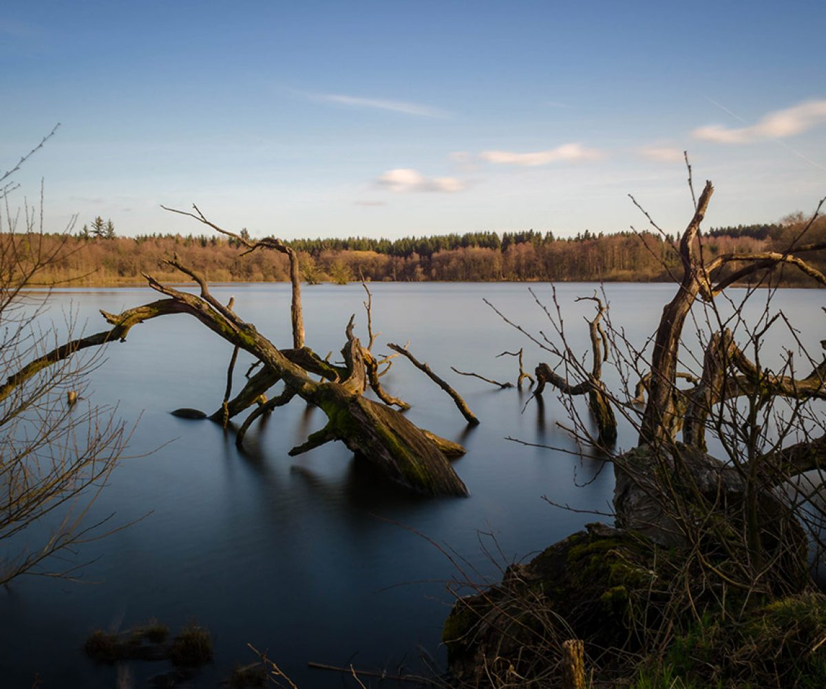 Wandern auf der Drei-Seen-Tour Freiensteinau