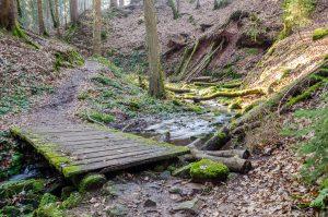 Stege in der Lochbachklamm sorgen für trockene Füße.